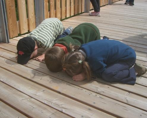 Kinder knien auf dem Boden und schauen durch die Holzdielen.