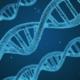 blauer DNA Strang