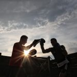 2 Boxer beim Training im Sonnununtergang